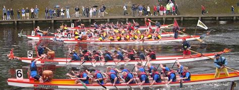 dragon boat york york rotary dragon boat race aims for 163 1m rotary