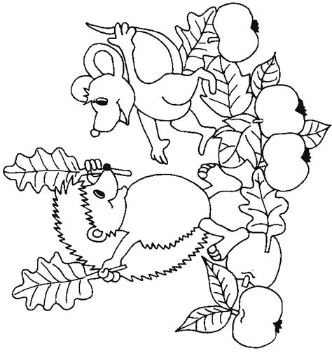 hedgehog coloring pages coloring page hedgehog animals coloring pages 18