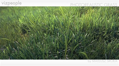 tutorial photoshop grass viz people photorealistic grass tutorial youtube