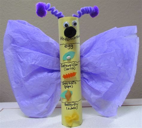 Paper Towel Crafts - learn to grow metamorphosis butterfly craft paper towel