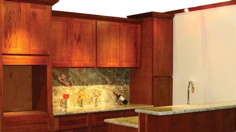 ants in kitchen cabinets elegant cherry