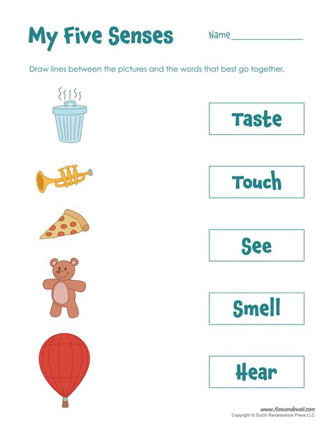 5 Senses Worksheets by Five Senses Matching Tim S Printables