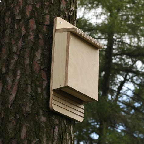 mixed bird bat box kits the nestbox company