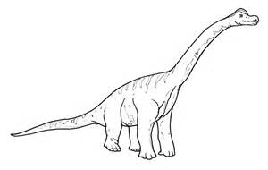 midisegni it dinosauri da colorare