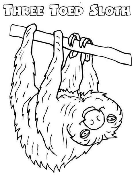 Picture Of Sloth Coloring Page Color Luna Sloth Coloring Page