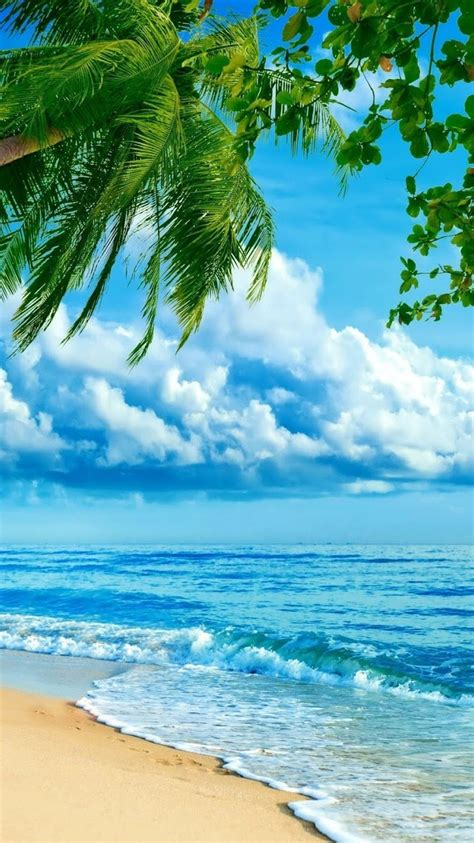 hd iphone wallpaper wallpapers tropical beaches