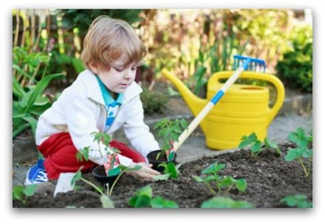 Child Vegetable Garden, Gardening with Kids, Gardening