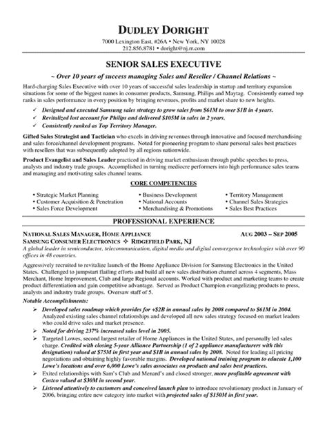sle of sales resume channel sales resume exle