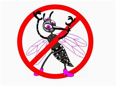 Stop Demam Berdarah Dengue agro pesquisas tudo sobre inseticidas