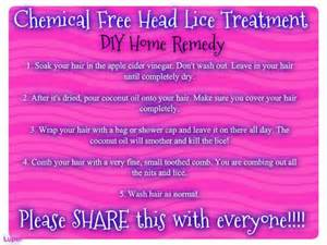 home lice treatment lice home remedy to