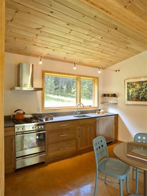 kitchen cabin modern cabin modern kitchen burlington by joan