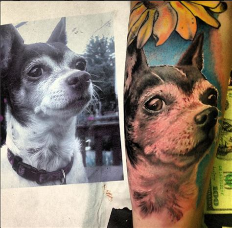 chihuahua portrait tattoo by stevie monie tattoos