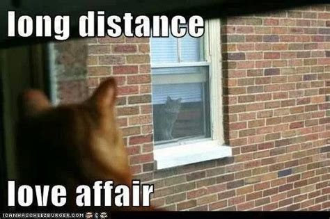 Distance Meme - long distance relationship memes www imgkid com the