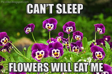 Flower Meme - picz i like march 2013