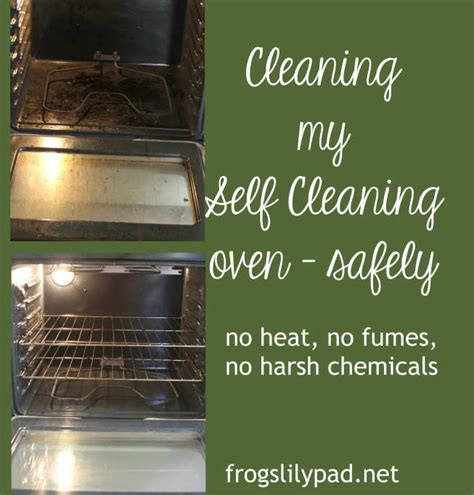 Detoxing Oven From Chemicals by 25 Best Ideas About Oven Cleaning Tips On