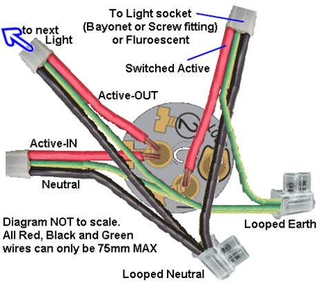 wiring a light socket australia wiring diagram for switch and batten holder images frompo