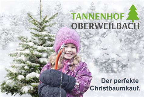 christbaum selber schlagen badisch christbaum selber schlagen kid news in dachau