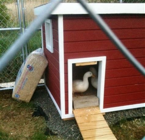 custom dog house plans dog house plans k 9 law enforcement dog house plans