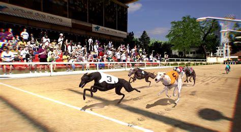 modified race virtual dog racing betradar new races every 2 minutes