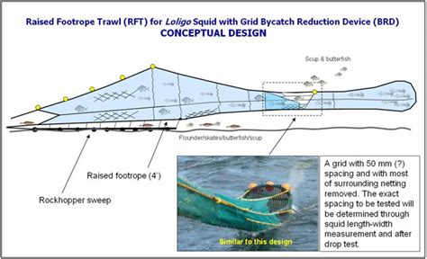 new england trawl net designs an historical overview squid grid project