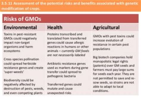 gmo food health effects gluten free diet with nutrition the about genetically modified foods gmo s safetywiseservices