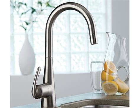Grohe Ladylux Pull Out Kitchen Faucet by Ladylux 3 Pro Single Kitchen Faucet With Pull Out