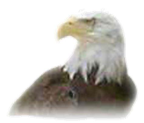 peleas de gallos del rayo mon diez 2016 pelea de gallos del rayo mon diez 2015
