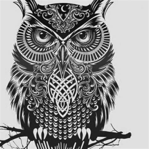 owl tattoos tribal tribal owl s design things