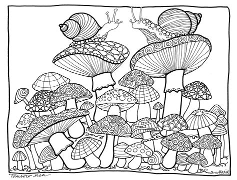 Realistic Cheetah Coloring Pages by Realistic Cheetah Coloring Pages 20152 4453 215 2889