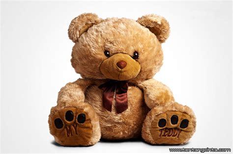 Jam Tangan Teddy 01 hadiah hadiah sesuai untuk wanita dan maksud disebalik