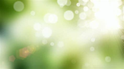calming green calming green wallpaper