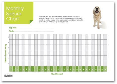 seizure chart template sle chart templates 187 seizure chart template free