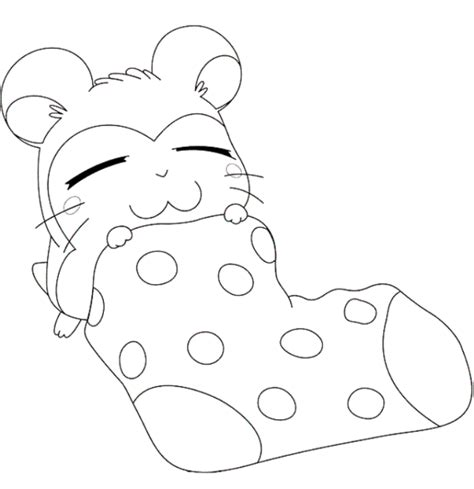 Hamster Coloring Pages Coloring Home Hamster Coloring Pages Printable