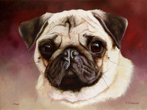 pug painting pug original painting by equestrian artist joanna stribbling