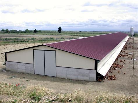 capannoni per allevamento polli capannoni avicoli per allevamento free range e biologico