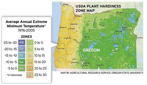 garden zones oregon new plant hardiness zones reflect warming temperatures