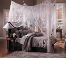 Canopy For A Bed Reasons To Get A Canopy Bed Diary Of A Smart Chick