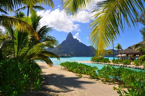 bora bora resort beach french polynesia mountain palm