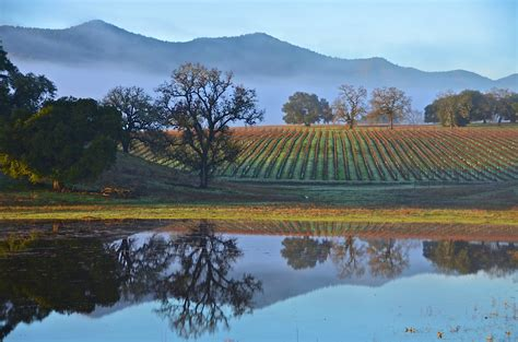 paso robles paso robles most popular wineries wine tasting trail