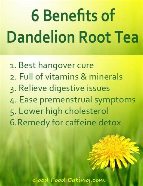 Benefits Of A Liver Detox Tea by 25 Best Ideas About Dandelion Root Tea On