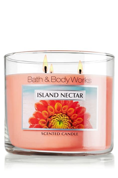 Bath Works Goes Tropical by 99 Best Slatkin Co Candles Images On Bath