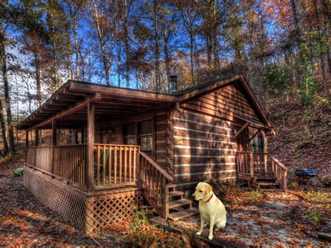 Cabin Creek Grooming by Top 15 Spots For You And Your