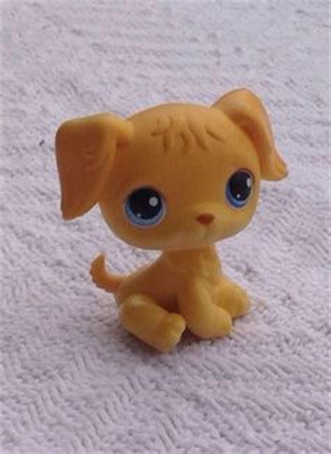 lps golden retriever 1000 images about mlp lps on littlest pet shops twilight sparkle and lps