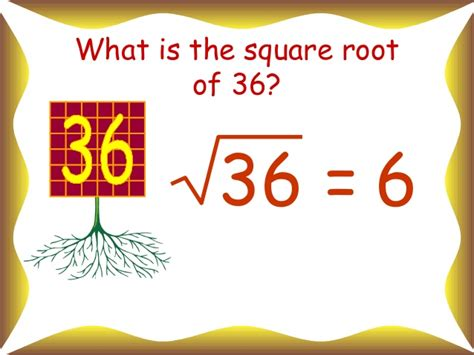 what is the square root of 1000 square and square roots
