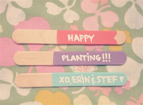 Bj 8303 Whatever Letters White oh so lovely vintage popsicle stick herb garden labels