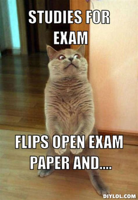 Newspaper Cat Meme - 15 things you think during an exam university compare
