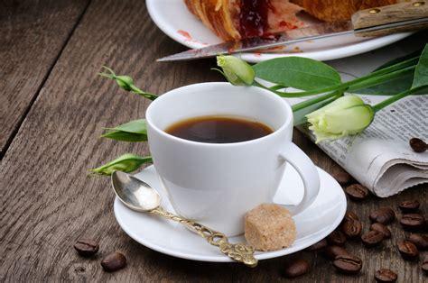 Gelas Coffee cangkir cangkir ideal untuk kopi majalah otten coffee