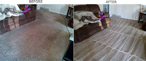 upholstery cleaning utah carpet cleaning service in ogden utah