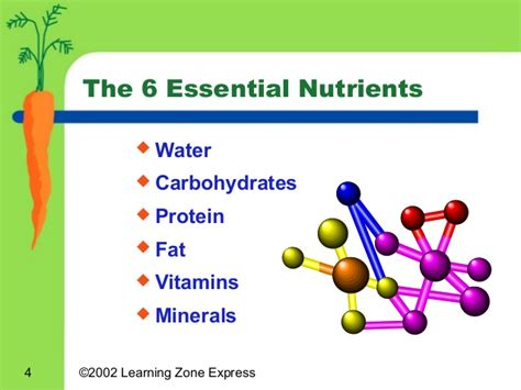 carbohydrates nutrients essential nutrients worksheet images