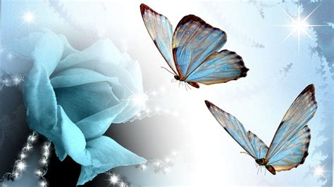 wallpaper of blue butterfly blue butterfly wallpapers wallpaper cave